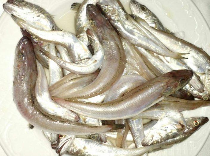 Los Pescaítos